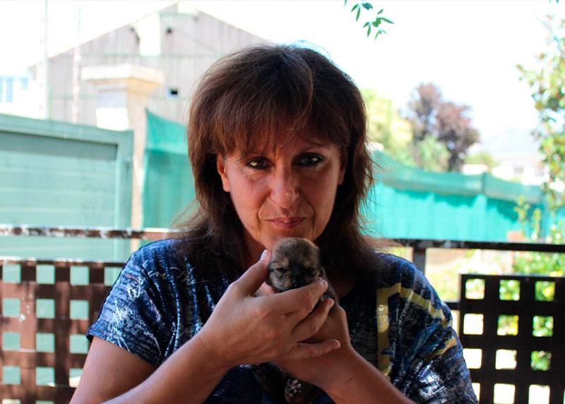 """Veves Gascón """"La mayor parte de nuestras adopciones son gracias a las redes sociales"""""""